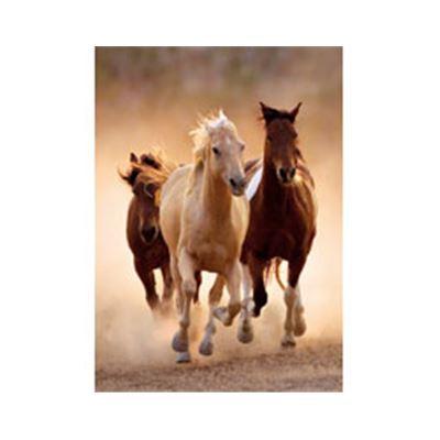 1000 piezas high quality runnig horses - 06639168